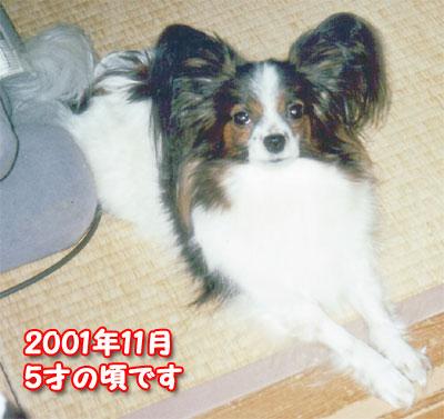 mikan0209.jpg