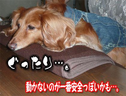ranmaru03.jpg
