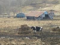 200804釧路 036