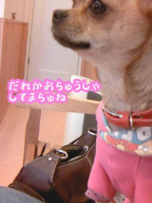 01_20081219175624.jpg