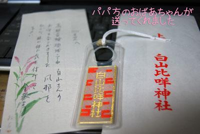 01_20090117154944.jpg