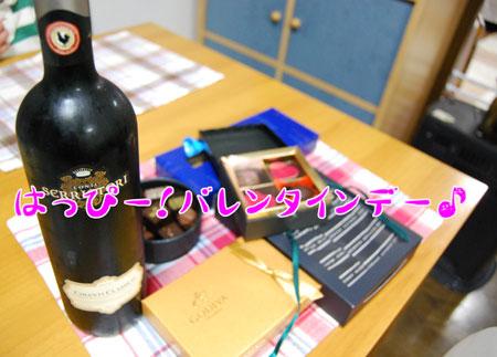 01_20090214212619.jpg