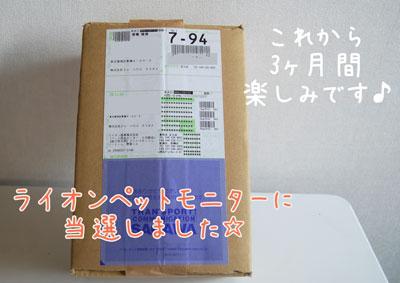 01_20090302185840.jpg