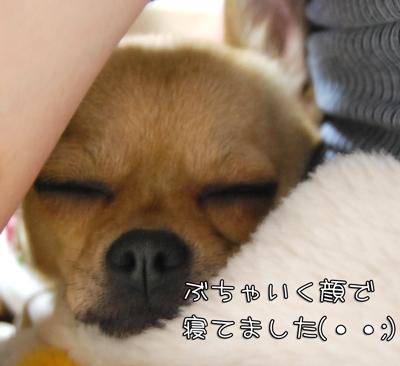 02_20090525204808.jpg