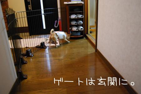 02_20090616191155.jpg