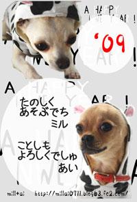 03_20090101210730.jpg