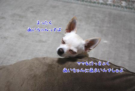 03_20090118205440.jpg
