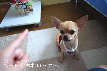03_20090720211006.jpg