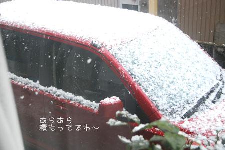 04_20090327080904.jpg
