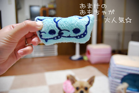 04_20090513204015.jpg