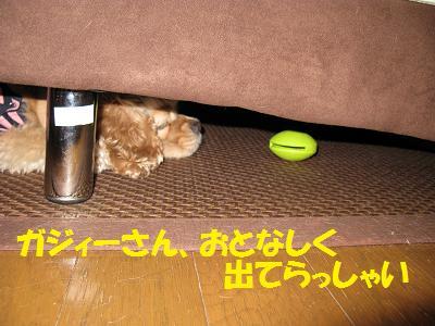 003_20081003231134.jpg