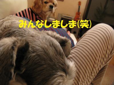 004_20080927011322.jpg