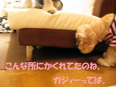 004_20081003231119.jpg