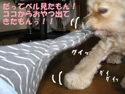 011_20080829004246.jpg