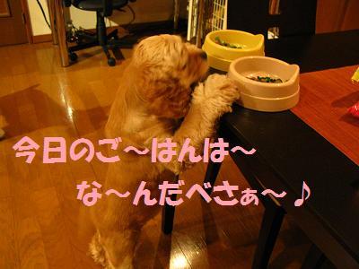 025_20080831012152.jpg