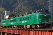 090104-shigetomi-LtdExp-kirishima-green.jpg