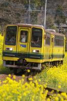 090329-isumi-higashihusamoto-3.jpg