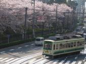 090405-toden-asukayama-3.jpg