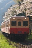 090411-kominato-kazusaookubo-3.jpg