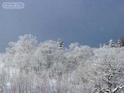 安比雪景色