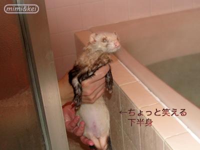 多夢の風呂上がり