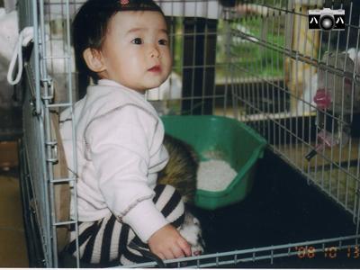 動物2匹2