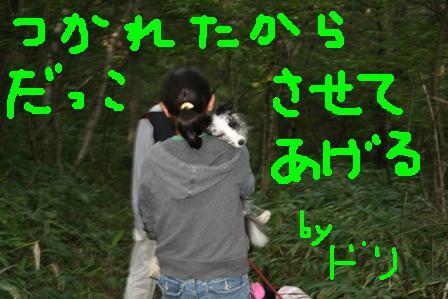IMG_0406_20080915165322.jpg