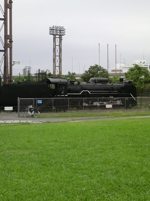 P1000177.jpg