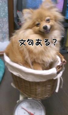 iND7EQDu.jpg