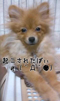 oHfxjQ7C.jpg