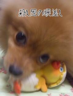 oZU_q38d.jpg
