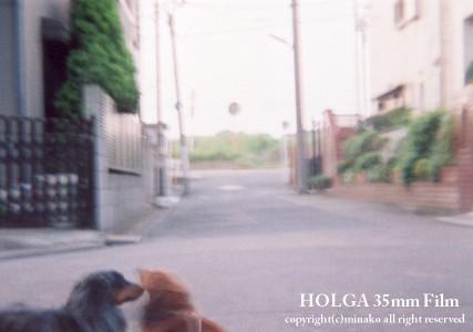 holga35mm3.jpg