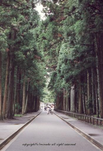 matushima3.jpg
