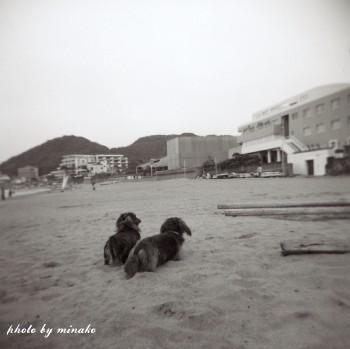 monokuro11.jpg