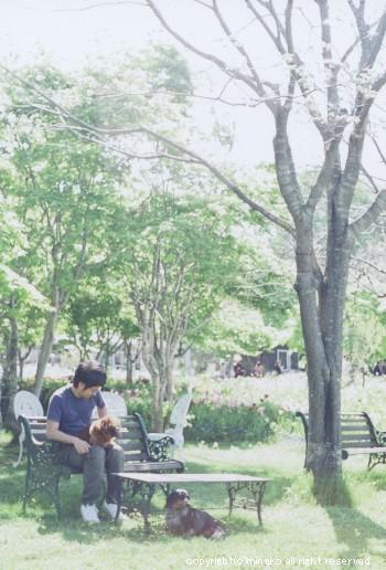 shichiku4.jpg