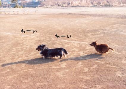 tamagawa2006-2.jpg