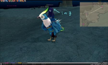 mabinogi_2009_07_29_016_convert_20090730020617.jpg