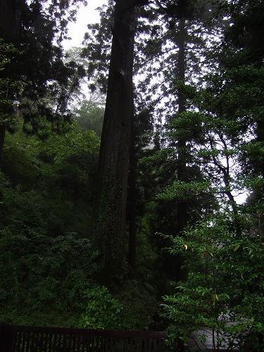 s-2007_09170034.jpg