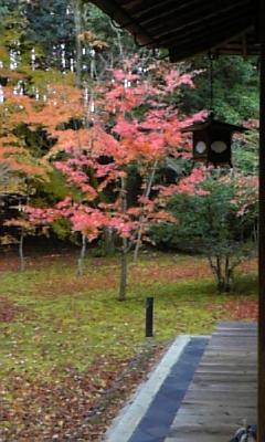 京都20081128-30 040
