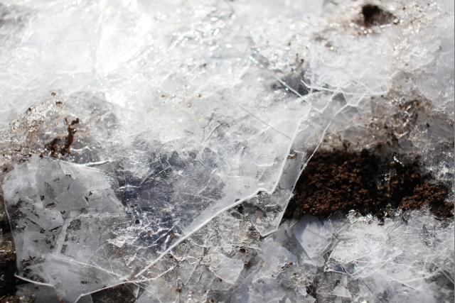 20100117_05_ice.jpg