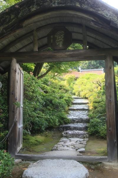 20100816_06_sansou.jpg