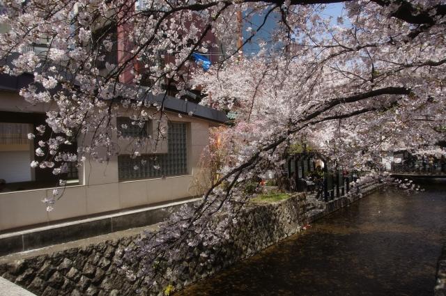 20110410_01_kiyamachi.jpg