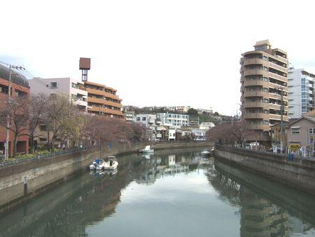 20100326-01.jpg