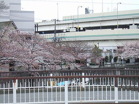 20100331-02.jpg