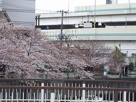 20100401-02.jpg