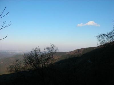 20050212_010.jpg