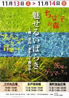20101109083606703_0001.jpg