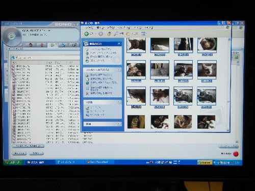2008-1-7-4.jpg