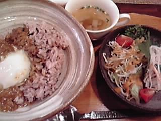 kikumaya1
