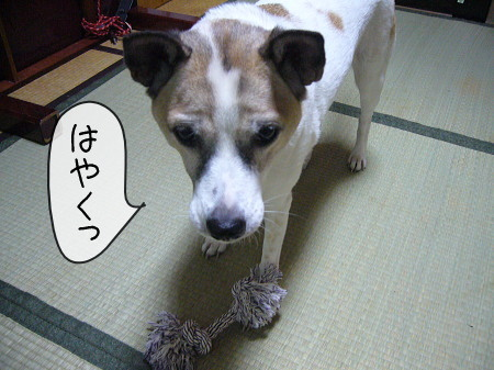 2008-09-14-2.jpg